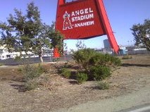 Angel Stadium Sign1